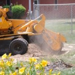 Stump Removal - Tree Removal - Equipment